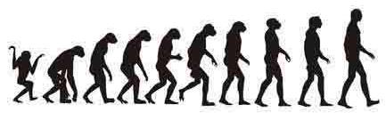 070831_human_evolution_ff
